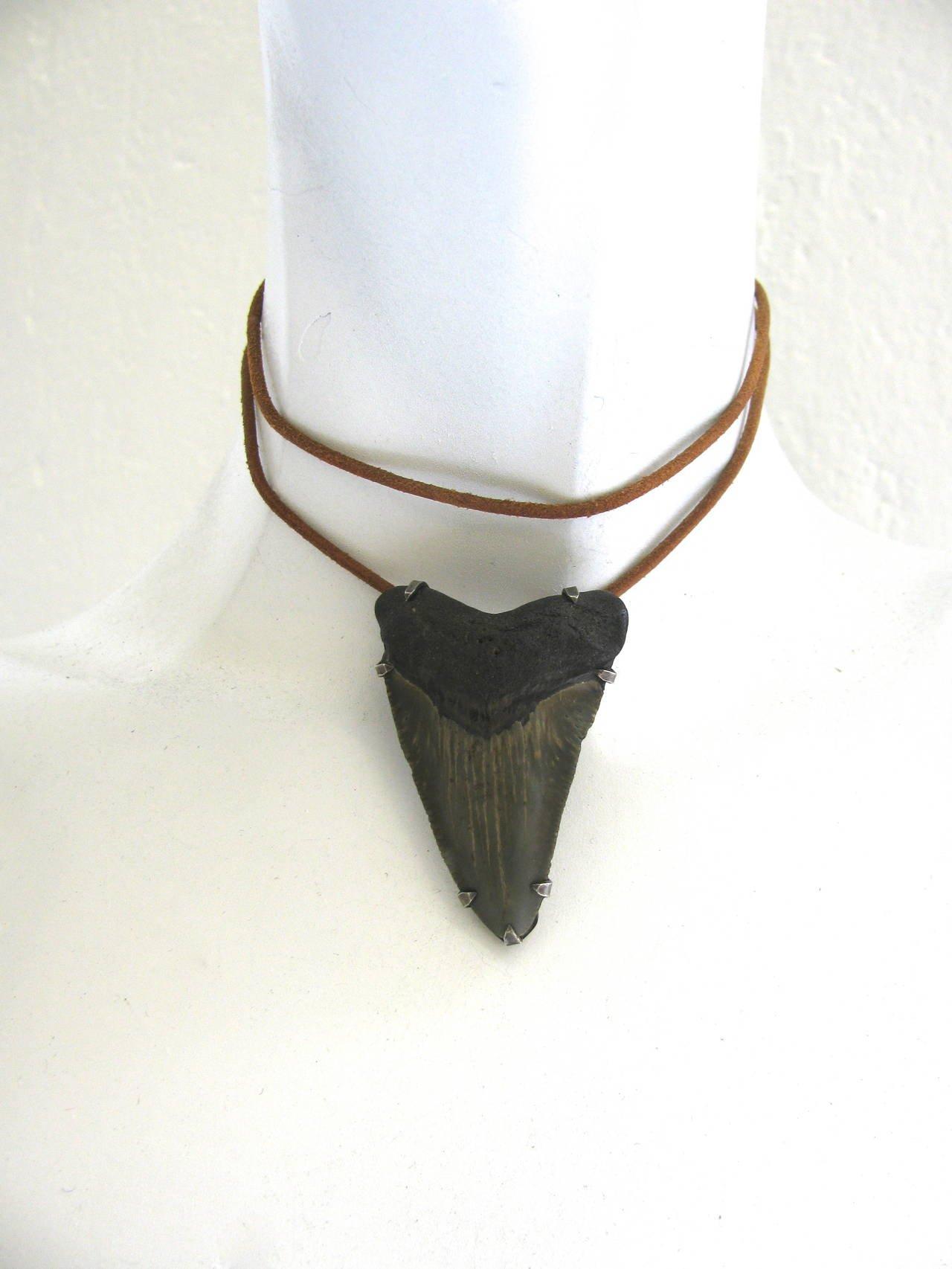 Pirate Queen Megalodon Pendant